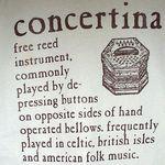 shirt - concertina