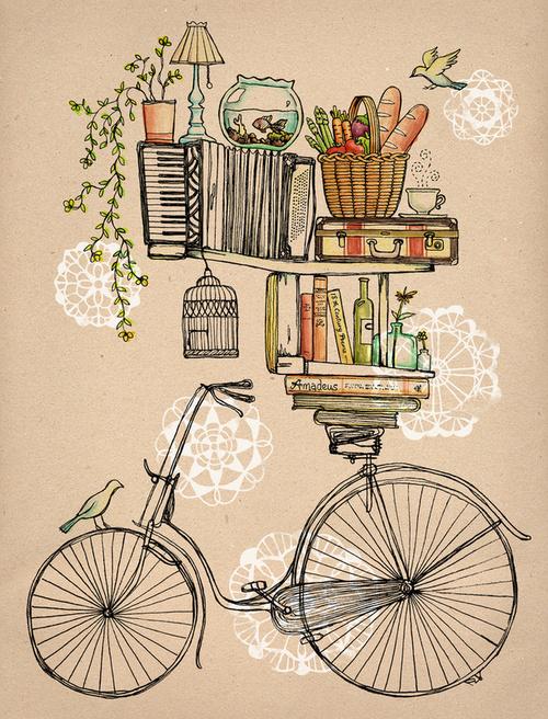 accordion-bicycle-bike-bird-Favim.com-518464