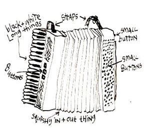cartoon_accordion_03web